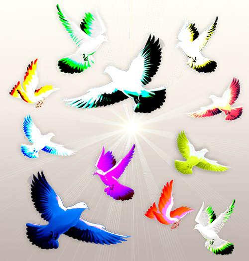 Which bird do you focus upon?