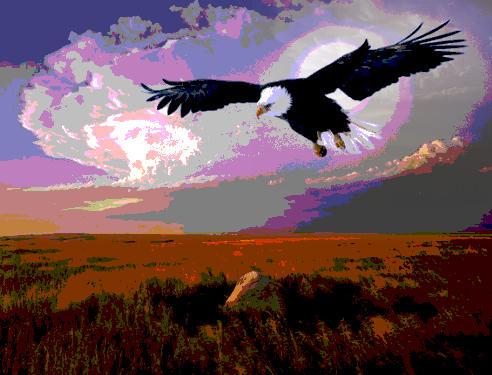 Osho: Was ist Freiheit?